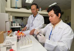Two male researchers in white coats in lab wearing medical golves work with samples in test tubes