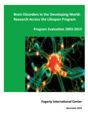 Cover: Program Evaluation 2003-2013 - Brain Disorders in the Developing World