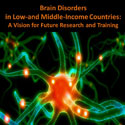 Portion of the poster for a meeting on brain disorders in LMICs