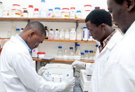 Three male researchers wearing white lab coats and gloves work with equipment in lab
