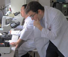 Dr Tucker in white lab coat bends down to review a slide under a microscope, another researcher seated in the background