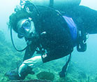 Dr. Marcy Balunas explores ocean floor under water in full scuba gear
