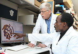 APTI Fellow Idowu Aimola discusses information on a computer screen in a lab with NIH Director Dr. Francis Collins.