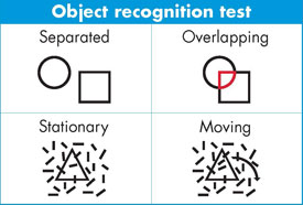 Chart showing object recognition tests, full description below