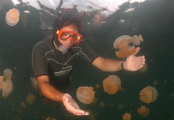 Dr Alex Dehgan underwater in wetsuit with snorkel and mask