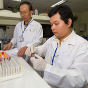 Two men in a lab in white coats work with a counter full of test tubes