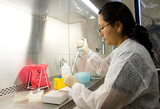 A female researcher works with samples under a fume hood in a lab
