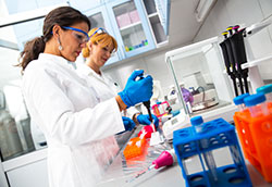 Two female scientists researching in laboratory.