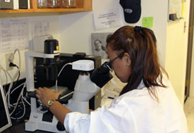 Female researcher in white coat looks in microscope in lab