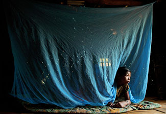 Girl in Bangladesh peeks head out from under a blue mosquito net hanging from the ceiling