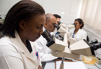 Four researchers use multi-viewer training microscope in Mozambique