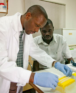Two men working side by side in a laboratory at a MEPI-supported institution examine samples, one wears white lab coat and gloves