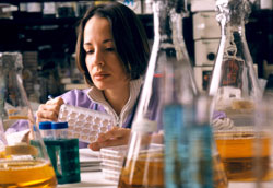 Woman researcher closely observes samples in dish, many vials of liquid in foreground