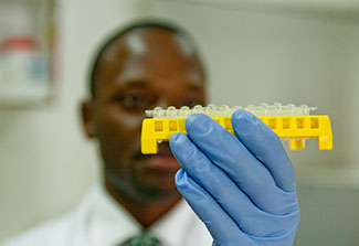 Researcher working in lab examines samples.