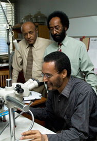 Three men in dress shirts in office gather around a microscope