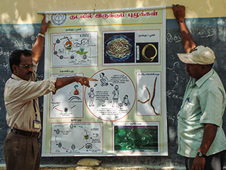 Male researcher presents poster on infectious disease