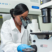Photo courtesy of University of the West Indies. Female researchers works in a lab with a microscope.