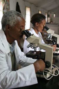 African researchers look into microscopes