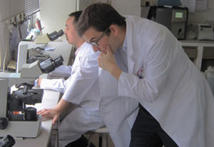 Photo: Dr Tucker in white lab coat bends down to review a slide under a microscope, another researcher seated in the background