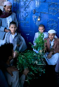 Three boys and two men sit and stand around a large pile of khat branches and leaves on the ground, large blue metal door behind