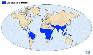 a round map of the world with distribution of malaria depicted by blue areas across the southern half of the world. Photo credit: CDC