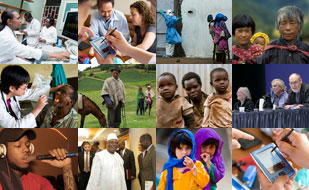 Collage of images from the top global health research news stories of 2014
