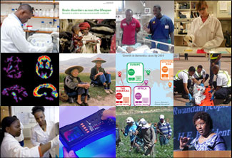 Collage of images from the top global health research news stories of 2015