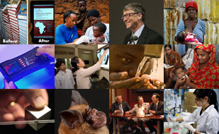 Collage of images from the top global health research news stories of 2013