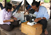 Man squatting looks through microscope, woman seated prepares samples, both on wooden platform with open air sides