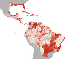 Heat map showing environmental suitability for Zika virus in the Western hemisphere